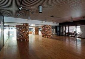 Viale Belfiore,Viale Belfiore,Firenze,Italy 50144,2 BathroomsBathrooms,Commerciale,Viale Belfiore,51